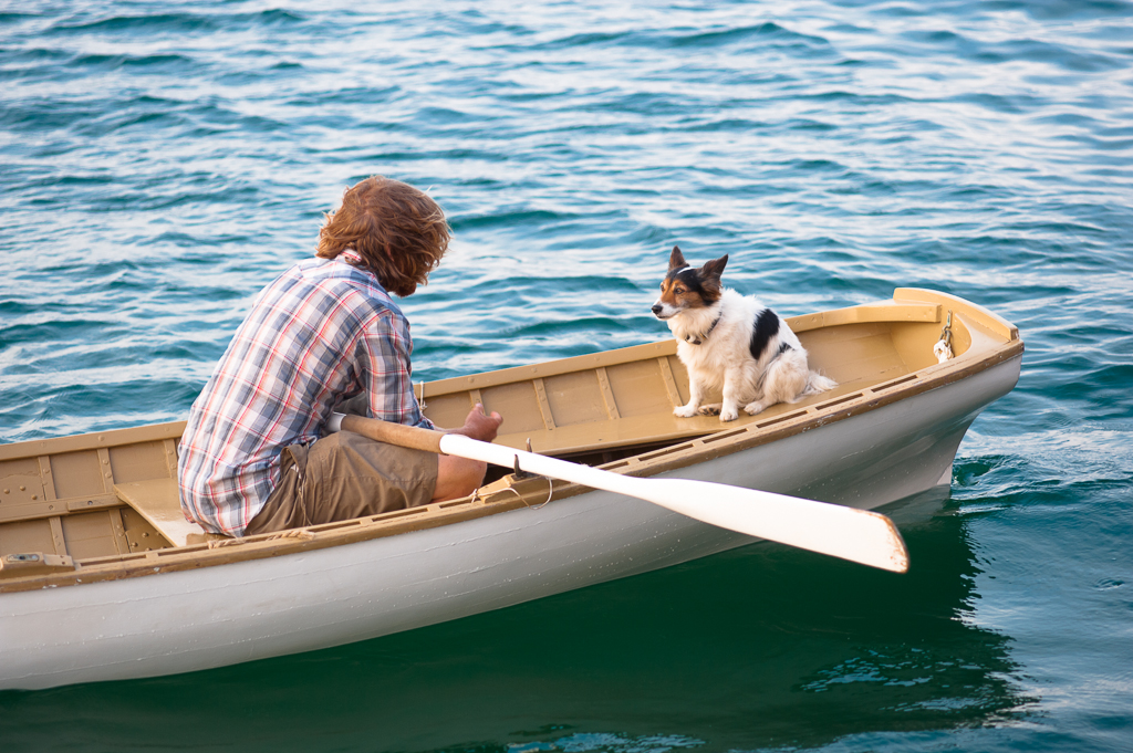 What about Fido? Dog-friendly lodging on Martha's Vineyard