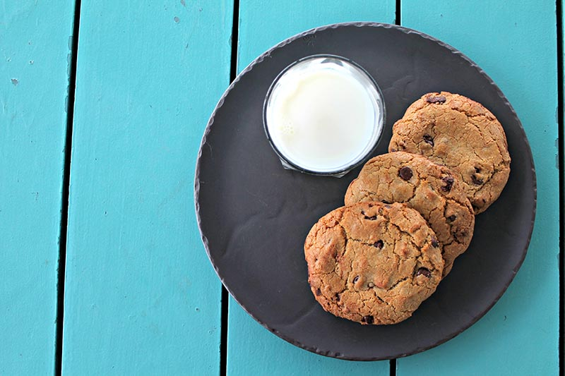 Some of our favorite cookies on Martha's Vineyard